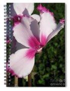 Cyclamen Named Victoria Spiral Notebook