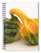 Decorative Squash Spiral Notebook