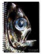 Deep Sea Hatchetfish Spiral Notebook
