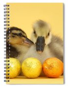 Embden X Greylag Gosling And Mallard Spiral Notebook