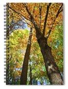 Fall Forest Spiral Notebook