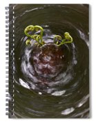 Ferns In A Stream Spiral Notebook