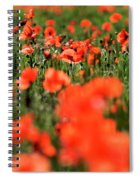 Field Of Poppies. Spiral Notebook