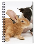 Flemish Giant Rabbit And Miniature Bull Spiral Notebook
