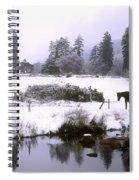 Glendalough, Co Wicklow, Ireland Spiral Notebook