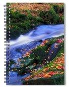 Glenmacnass Waterfall, Co Wicklow Spiral Notebook