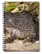 Gopher Frog Spiral Notebook