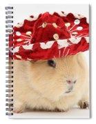 Guinea Pig Wearing A Hat Spiral Notebook