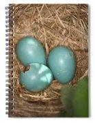 Hatching Robin Nestlings Spiral Notebook