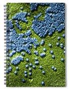 Hepatitis Virus Spiral Notebook