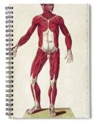 Historical Anatomical Illustration Spiral Notebook