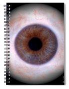 Human Eye Spiral Notebook