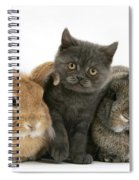 Kitten And Rabbits Spiral Notebook