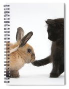 Kitten And Young Rabbit Spiral Notebook