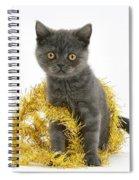 Kitten With Tinsel Spiral Notebook