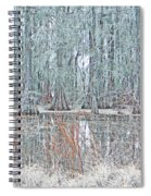 Lake Martin Swamp Spiral Notebook