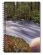 Liesijoki Spiral Notebook