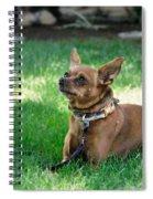Madox Spiral Notebook