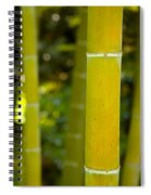 Mystical Bamboo Spiral Notebook