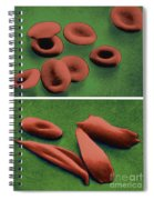Normal And Sickle Red Blood Cells Spiral Notebook