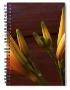 Orange Daylily Spiral Notebook