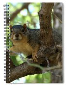 Out On A Branch Spiral Notebook