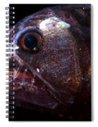 Pacific Viperfish Spiral Notebook