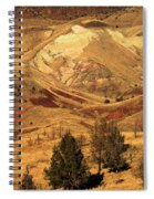 Painted Landscape Spiral Notebook