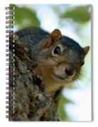 Peak Spiral Notebook