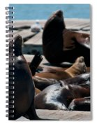 Pier 39 San Francisco Spiral Notebook