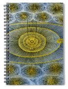 Plurality Of Worlds, Leonhard Euler Spiral Notebook