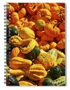 Pumpkins And Gourds Spiral Notebook