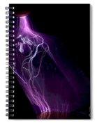 Quartz Crystal & Sparks Spiral Notebook
