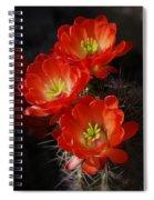 Red Hedgehog  Spiral Notebook
