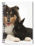 Rough Collie With Black Rabbit Spiral Notebook