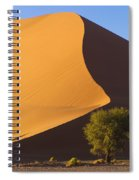 Sand Dune, Namibia, Africa Spiral Notebook