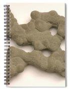 Sandstone Conglomerate Spiral Notebook