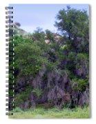 Santa Susana Mountains Spiral Notebook