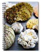 Sea Treasures Spiral Notebook