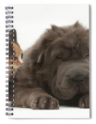 Shar Pei Puppy And Tortoiseshell Kitten Spiral Notebook
