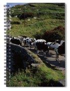 Slea Head, Dingle Peninsula, Co Kerry Spiral Notebook