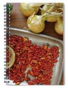 Spicy Still Life Spiral Notebook