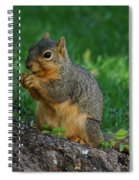 Squirrel Eating Spiral Notebook