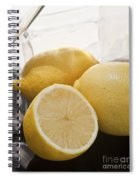 Still Life Of Bottles  And Lemons Spiral Notebook