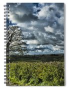 Sycamore Tree Spiral Notebook