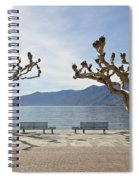 sycamore trees in Ascona - Ticino Spiral Notebook