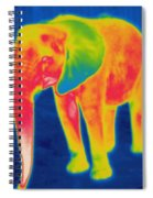 Thermogram Of An Elephant Spiral Notebook