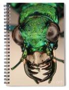 Tiger Beetle Spiral Notebook