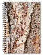 Tree Bark Spiral Notebook