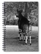 Two Stripes In Black And White Spiral Notebook